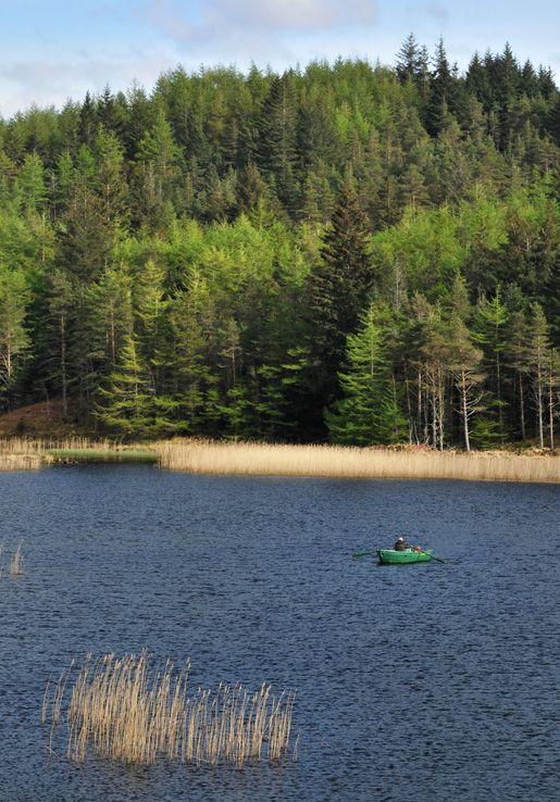 Loch Duart, NW Sutherland.