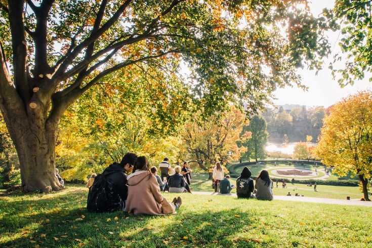 You walked to work today with your scarf around your neck, your favourite sweater on, and a pumpkin spice latte in your hand. This means one thing: autumn has officially arrived. The city is covered in changing leaves, but it's not so cold yet that you can't bear to spend time outside.