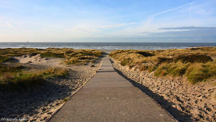 Path to the beach – Beach Wallpaper by Agaat 26 #travel #holiday #booking #wanderlust #earth #destinations #traveldestinations Beach