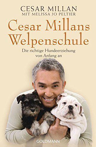 From 6.13:Cesar Millans Welpenschule: Die richtige Hundeerziehung von Anfang an