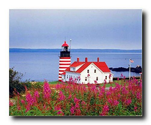 Simply Beautiful! If you want to transform look of your living space, bedroom or living room, add this wonderful lighthouse seascape art print poster into your home. This wall poster will be a great choice for any space. This poster captures the image of west Quoddy head lighthouse near the sea and delicate pink tone flowers blended with rich greens makes it more appealing and sure to grab lot of attention. Make it a part of your room to lend it vibrancy.