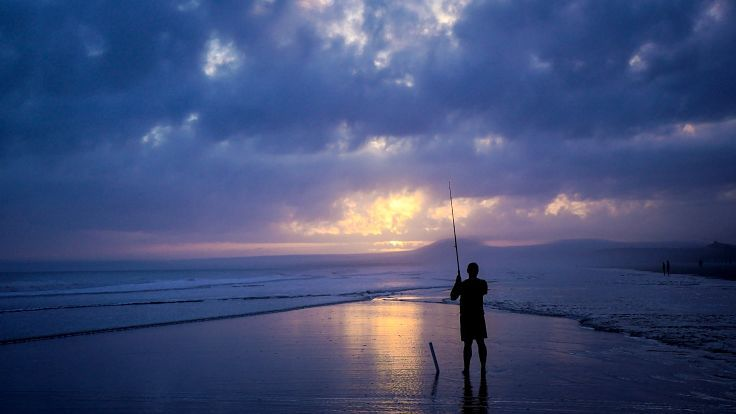 Alone and thinking like a fish