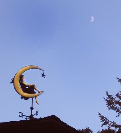 Moon Goddess Weathervane. Hmm if not this one.. then another for my birthday and i AM serious. new roofthis year.. ya huge income loss and NOW we need a roof.. figures eh?