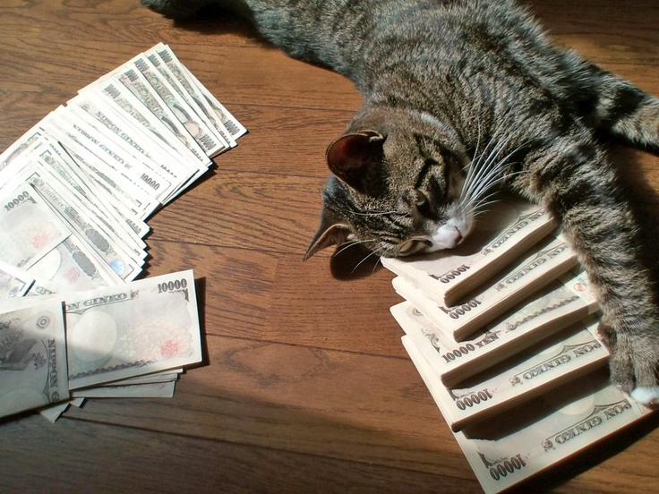 Million yen kitty