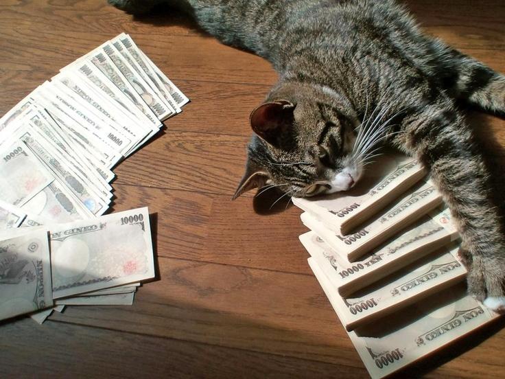 Million yen kitty