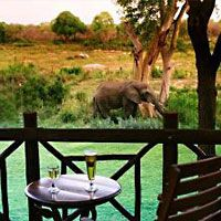 Where I got married! Situated only 100 meters from the Paul Kruger Gate of the Kruger National Park, theluxurious Protea Hotel Kruger Gate provides GUESTS with the ideal location from which to experience wildlife first-hand