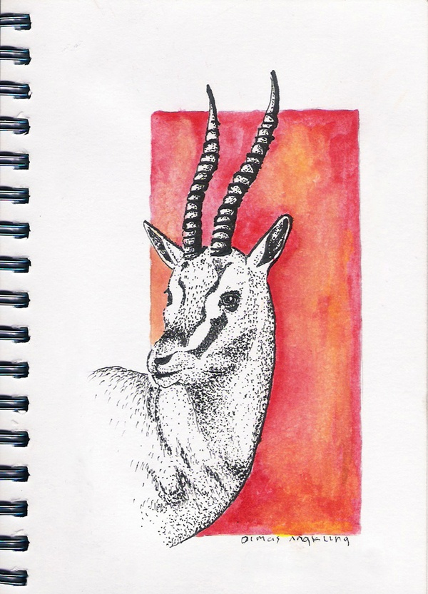 "see another ""Herbivore"" daily drawing on my behance"