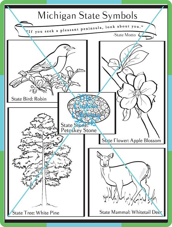 Have fun while learning about Michigan State Symbols! Great for kids and classrooms learning about this great state. Coloring Page prints in black & white on a standard 8 1/2 x 11 in a PDF format.
