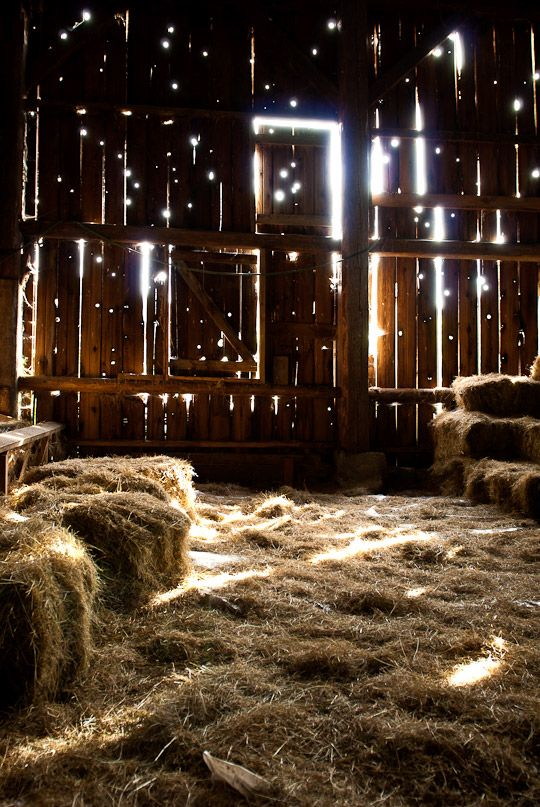 Image choc de mon enfance... d'où est née l'idée de ma grange!    Denman Island: From Goboroot