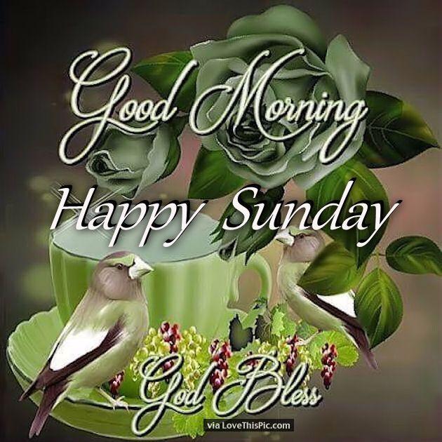 Good Morning Happy Sunday God Bless Good Morning Good Morning