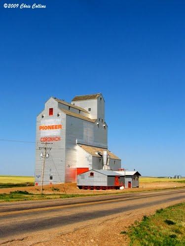Coronach, Saskatchewan  saw many of these along the road...