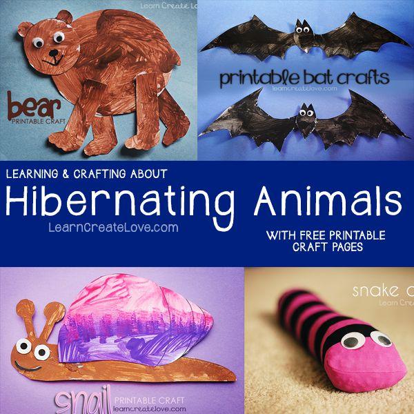 { Hibernating Animals }