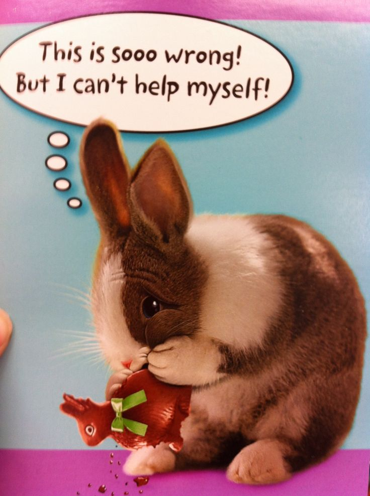 Easter card easter humor kawaii bunny cute pictures