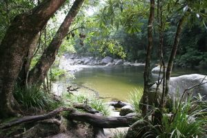 Mossman Gorge, Guugu Yalandji, Tropical North Queensland, yourtrails.com.au