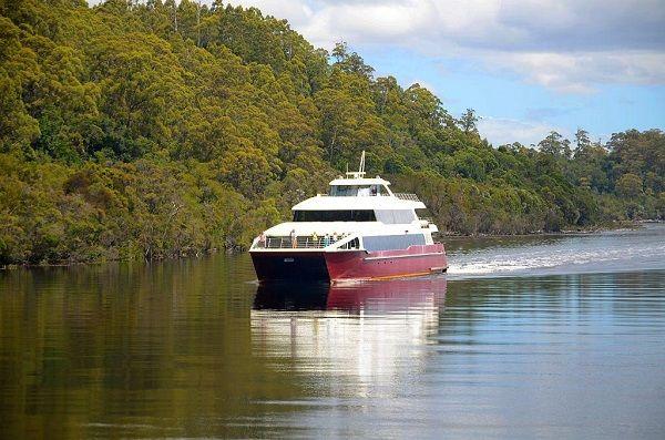 Cruise the Gordon River #Tasmania ~ photo by Dan Fellow, article for think-tasmania.com