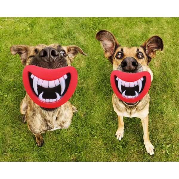 Creepy Doggy Chew toy- Ever wondered what your dog with look with a full set of human teeth? Here's the answer!