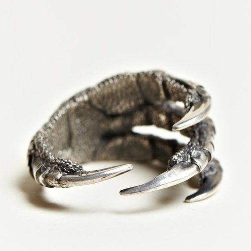 Claw Ring: Fashion, Claws Rings, Style, Silver Claws, Jewelry, Things, Accessories, Birds, Anne Demeulemeester