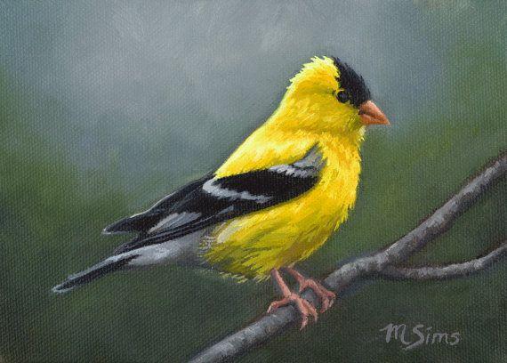 Jilguero Art Print  pintura de Pájaros  Jilguero americano