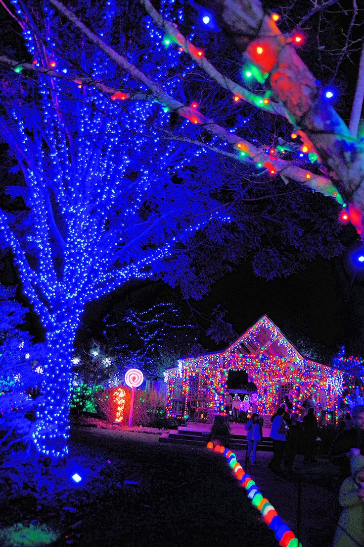 Winter Lights 2017 at the North Carolina Arboretum in Asheville - half million Christmas lights