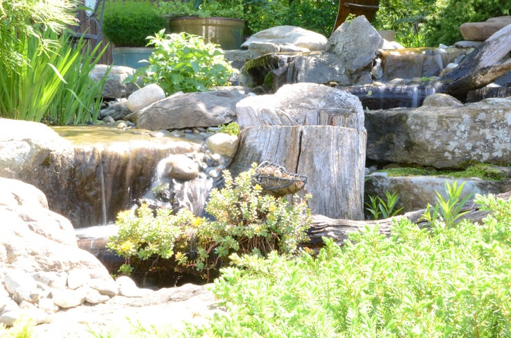 Backyard waterfall, exterior design