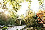 22 inspiring lawn-free yards