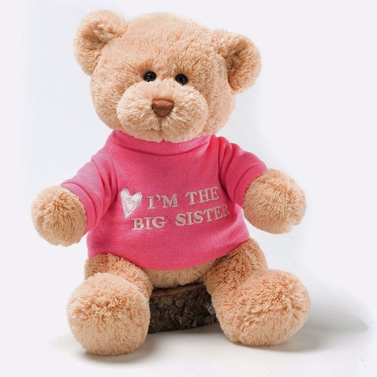 Big Sister Gund Plush Teddy Bear Sibling Gift - As Your Baby Grows Gift Boutique