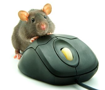 Online vastgoed kopen  Muis met muis...