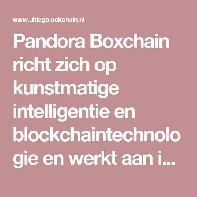 Pandora Boxchain richt zich op kunstmatige intelligentie en blockchaintechnologie en werkt aan innovatieve disruptieve blockchain-businessmodellen.