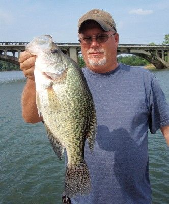59 best images about randy 39 s fishing on pinterest for Crappie fishing in mississippi
