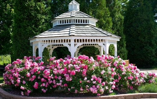 So záhradou sa dajú spraviť naozaj krásne veci. Len treba mať trošku fantázie.  http://www.lamelland.sk/poradenstvo/4-skraslenia-zahradnej-pergoly-ktore-stoja-za-to