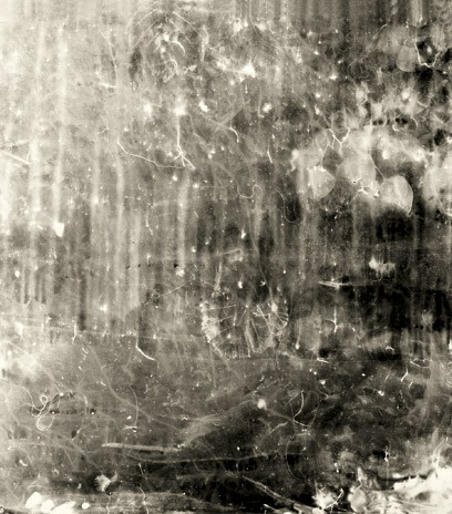 Floris Neusüss, Image was created by placing photographic paper in a garden at night during a rainstorm, exposed by lightning