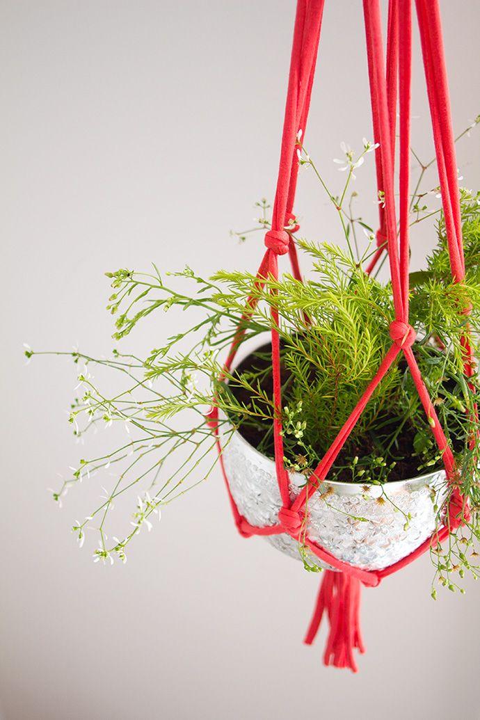 filet suspension plante2 Fabriquer un filet pour des plantes suspendues
