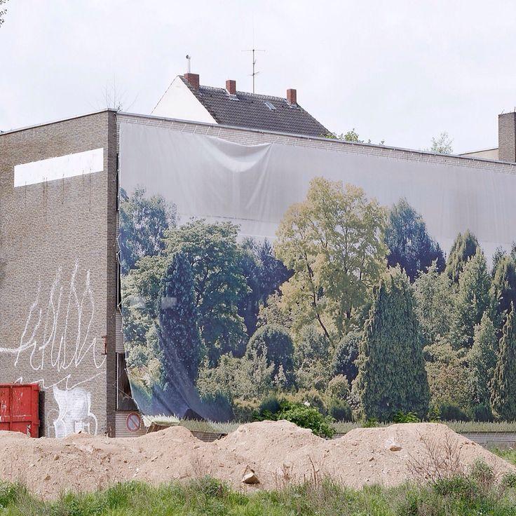 #diary #rivkahyoung #21022015 #düsseldorf #house #tarpaulin #trees #nature #green #searchingforparadise #buildingsite #ruin #wallpainting #demolition