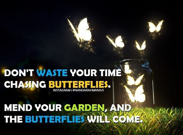 You have to develop yourself first in order to attract what you want. #quote #butterfly #hustle #developyourself #success #nevergiveup #motivation #inspiration #entrepreneur