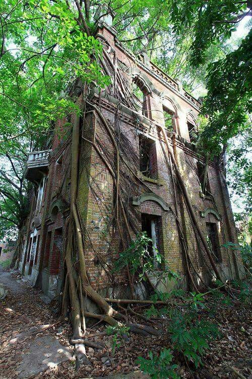Lost | Forgotten | Abandoned | Displaced | Decayed | Neglected | Discarded… Micoley's picks for #AbandonedProperties www.Micoley.com