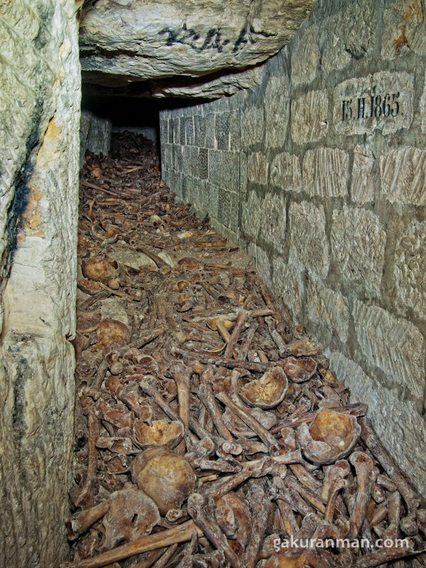 25+ Best Ideas about Catacombs on Pinterest  Catacombs ...