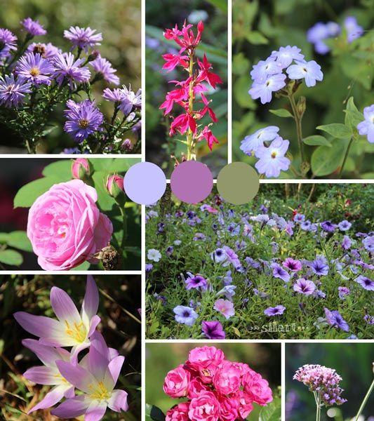 Septemberblüten, Blumen, flowers,  Sommer, Herbst, September, Natur, Fotografie, Photography, fotografieren, taking photos, moodboard, collage
