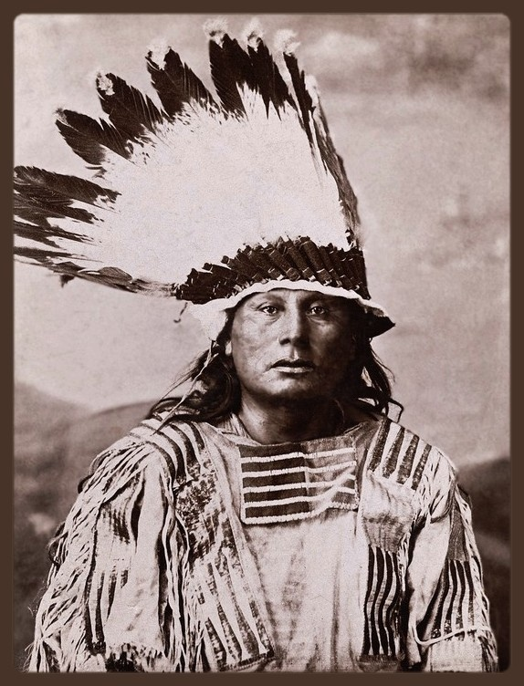 Chief Gall fought at the Battle of Big Mound with Inkapudta and was with Crazy Horse at the Battle of the Rosebud against General George Crook.