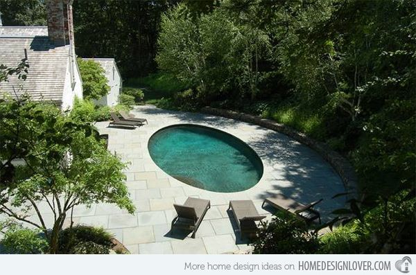 bluestone pool paving. birch trees around the back of the pool with other plantings
