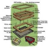 Image Detail For  Above Ground Garden Boxes: Vegetable Gardening