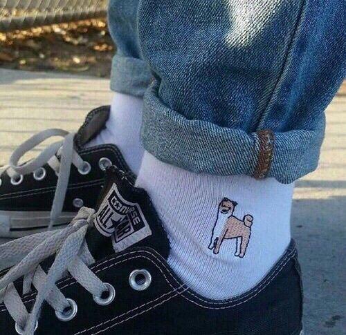 Imagem de converse, socks, and dog
