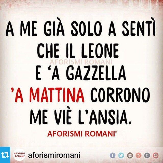 """""""Ansia....buongiorno!  #Repost @aforismiromani with @repostapp.・・・Nun sò a…"""