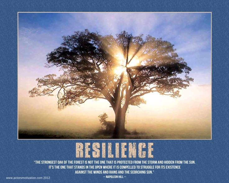 Quotes About Resilience In Business