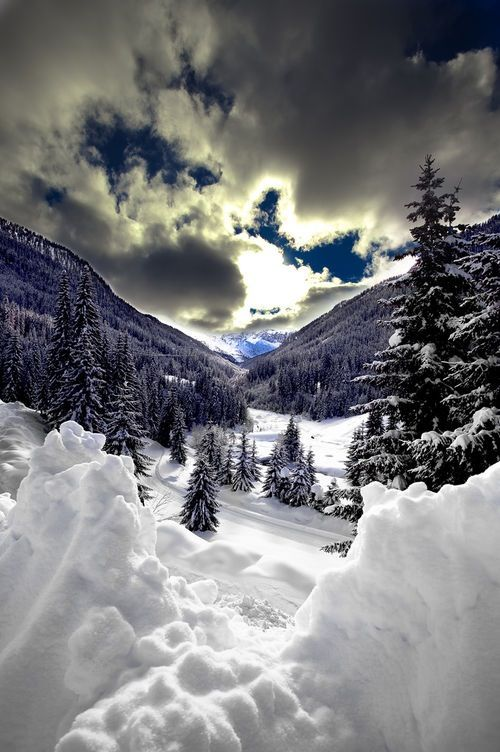 Winter Magnificence, snow, clouds, trees, mountains, beauty of Nature, breathtaking, stunning, gorgeous, peaceful, silence, photo