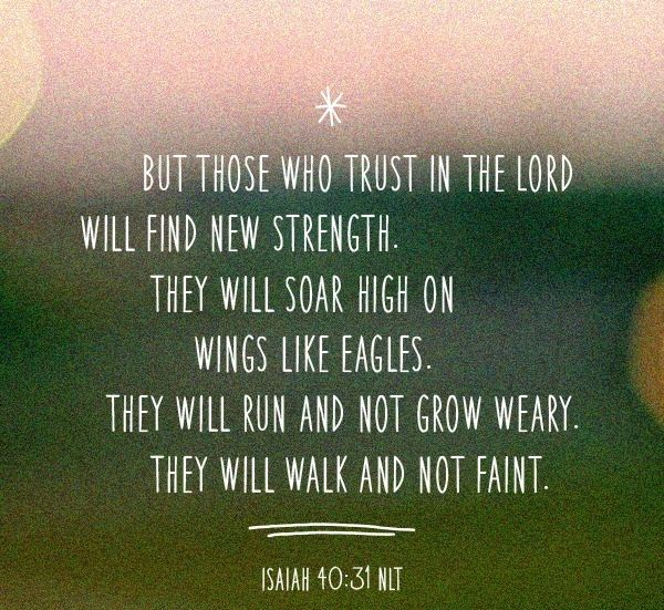 Bible Verses Quotes About Life Alluring 89 Best Old Testament Scripture Images On Pinterest  Bible
