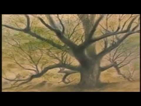 El hombre que plantaba árboles. (Jean Giono)