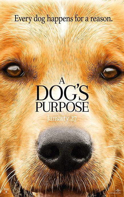 Watch A Dog's Purpose (2017) for Free in HD at http://www.streamingtime.net/movie.php?id=204   #movie #streaming #moviestreaming #watchmovies #freemovies