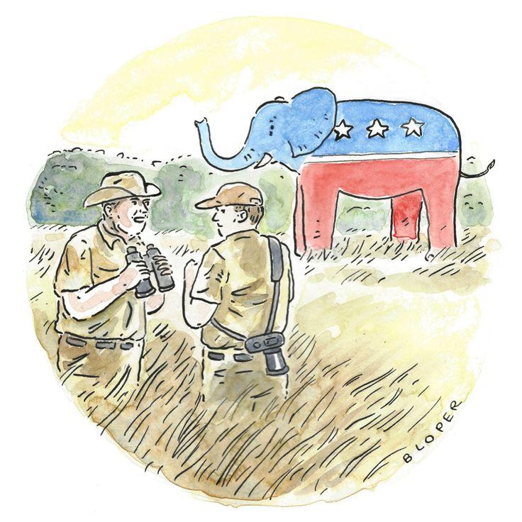 Daily Cartoon: Wednesday, November 15th | The New Yorker