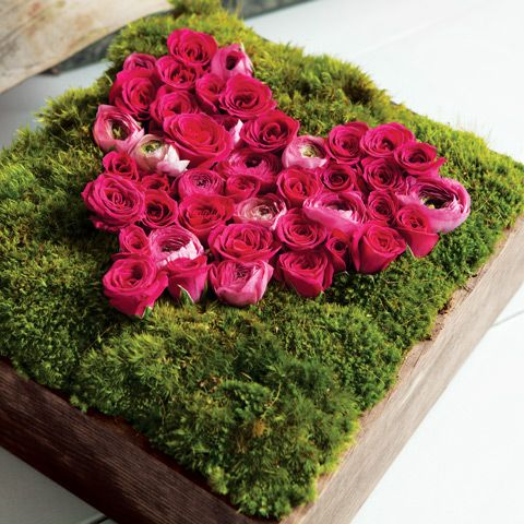 """Bella Rose Le Coeur:    Our symbol of love, Bella Rose Le Coeur is a truly unique and stunning fresh floral array of tiny pink hued rosebuds arranged in the shape of a heart. Surrounded by a bed of lush lichen moss and expertly arranged in a hand crafted wood box. Measures 9 3/4"""" x 9 3/4"""" x 6"""" and requires next day shipping.    http://www.oliveandcocoa.com/product/Bella_Rose_Le_Coeur?r=PT_A_201204"""