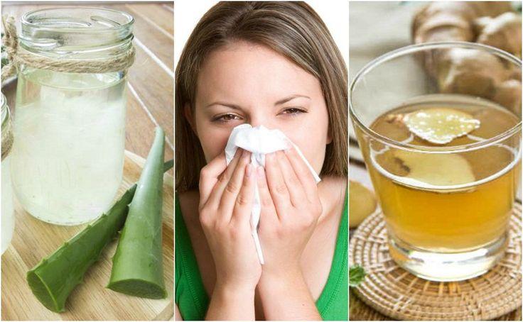 Las propiedades antiinflamatorias y antihistamínicas de algunos ingredientes naturales nos permiten controlar los síntomas de la rinitis alérgica. ¡Apunta!